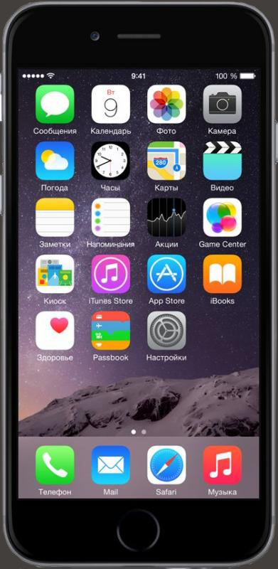 iPhone 6S 16GB (64Gb)
